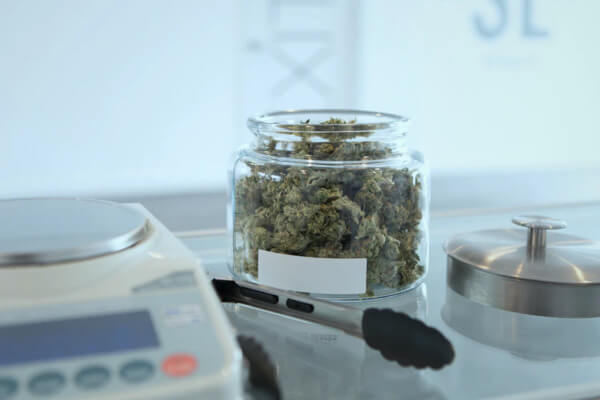 5 Most Promising Cannabis Tech Startups image